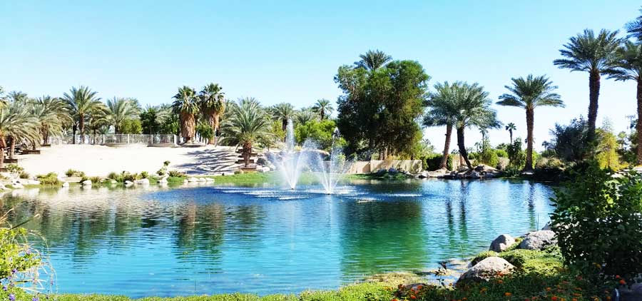 Indio Real Estate for sale and rent